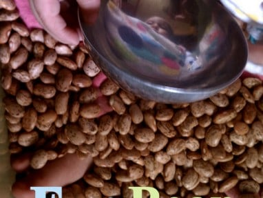 Full of Beans – 8 Fun Sensory Activities for the Bean Box