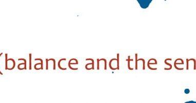 vestibular sense (balance and the sense of movement)