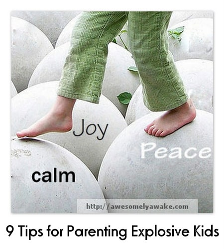 Strategies for bringing more calm to your household