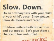 Parenting Secret Mission - Slowww Dowwnn