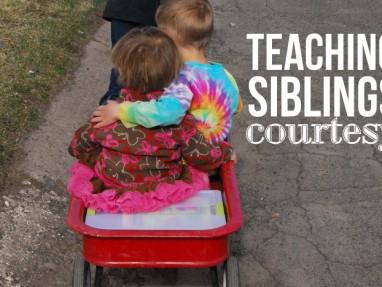 Reversing an Angry Sibling Habit